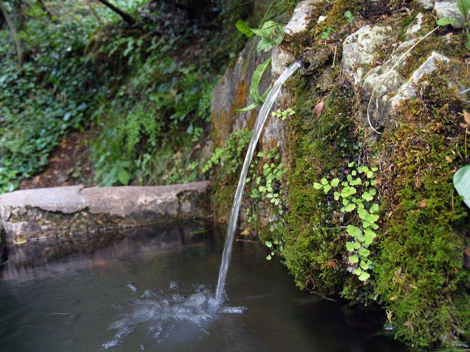 Zaragoza acoge el Encuentro estatal por un acuerdo en defensa de los ríos y del agua pública