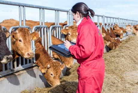Cuarte celebra el Día Internacional de la Mujer Rural
