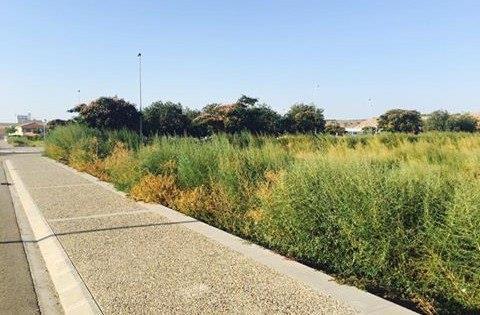 IU pregunta al Ayuntamiento de Fraga por la limpieza de varios solares propiedad de la Sareb