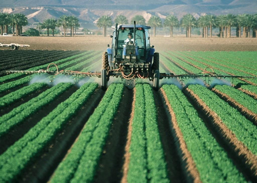 Cerca de 150.000 personas ya han firmado por una PAC más sostenible y justa con la naturaleza y los y las agricultoras