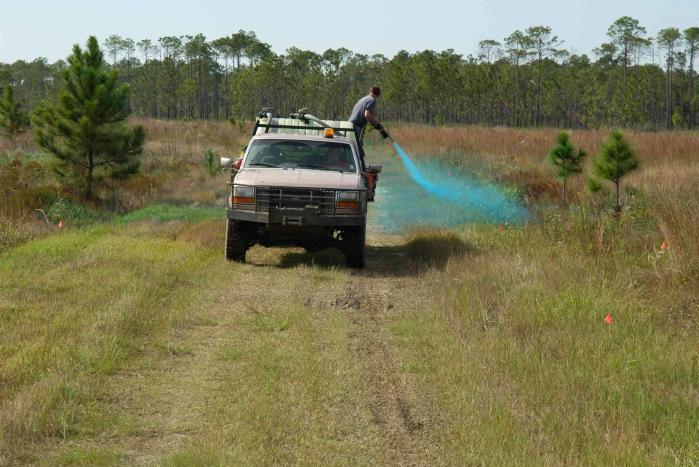 Las autoridades españolas conceden «autorizaciones ilegales» a pesticidas tóxicos