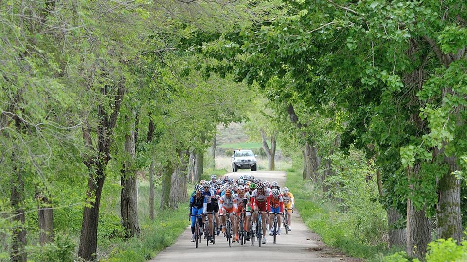 1.300 ciclistas participarán este sábado en Sos en la VI marcha cicloturista Rompepiernas