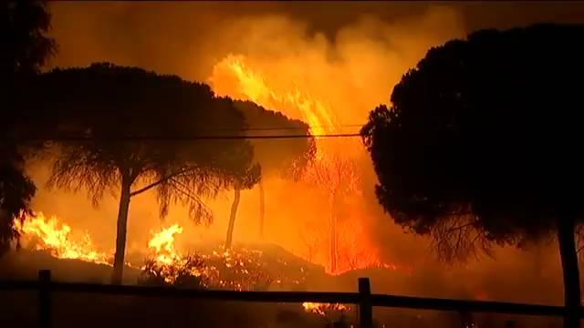 Las ONG ecologistas exigen el esclarecimiento de las causas del incendio en Doñana