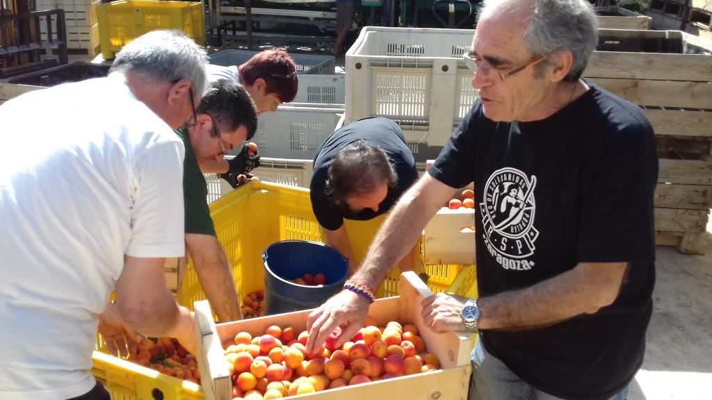 Nueva donación de fruta en Fraga con fines solidarios