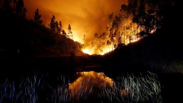 """WWF pide a los presidentes Sánchez y Costa un """"eje ibérico"""" contra los superincendios forestales"""
