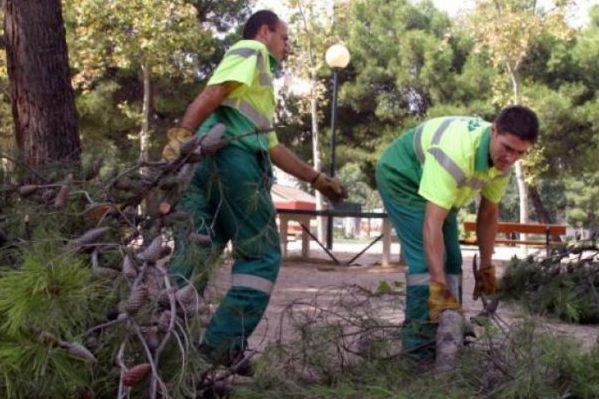 El nuevo contrato de Parques y Jardines de Zaragoza contará con un 32% más de presupuesto