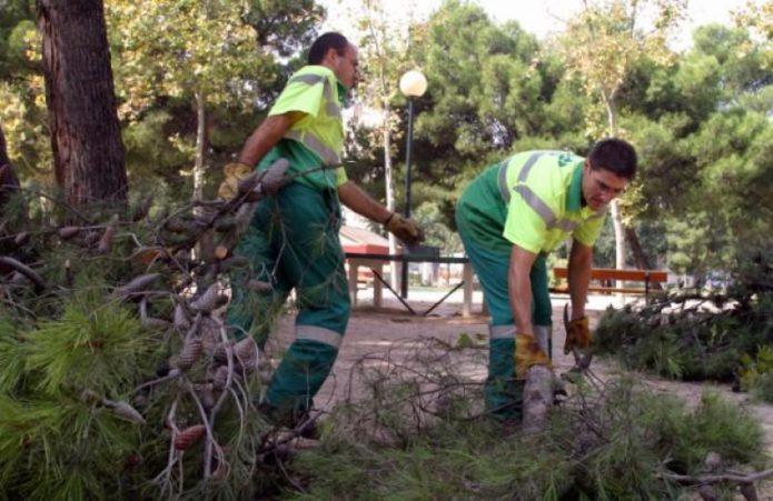 La plantilla de Parques y Jardines celebra que el TACPA haya avalado todas las cláusulas sociales