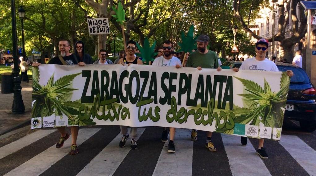 Registran una PNL por la regulación integral del cannabis en Aragón