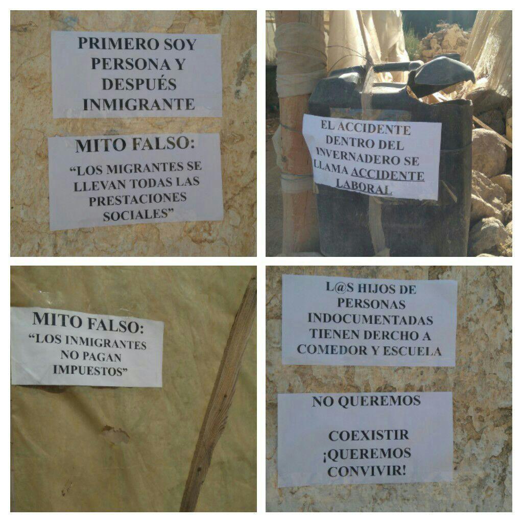 Algunos carteles en las infraviviendas de Campohermoso.