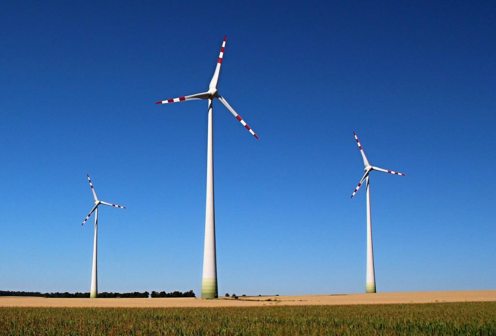 Las ONG ecologistas reclaman participar en la comisión de expertos sobre la transición energética