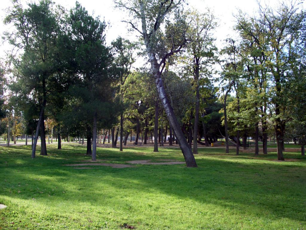 El parque del Tío Jorge renovará su sistema de riego