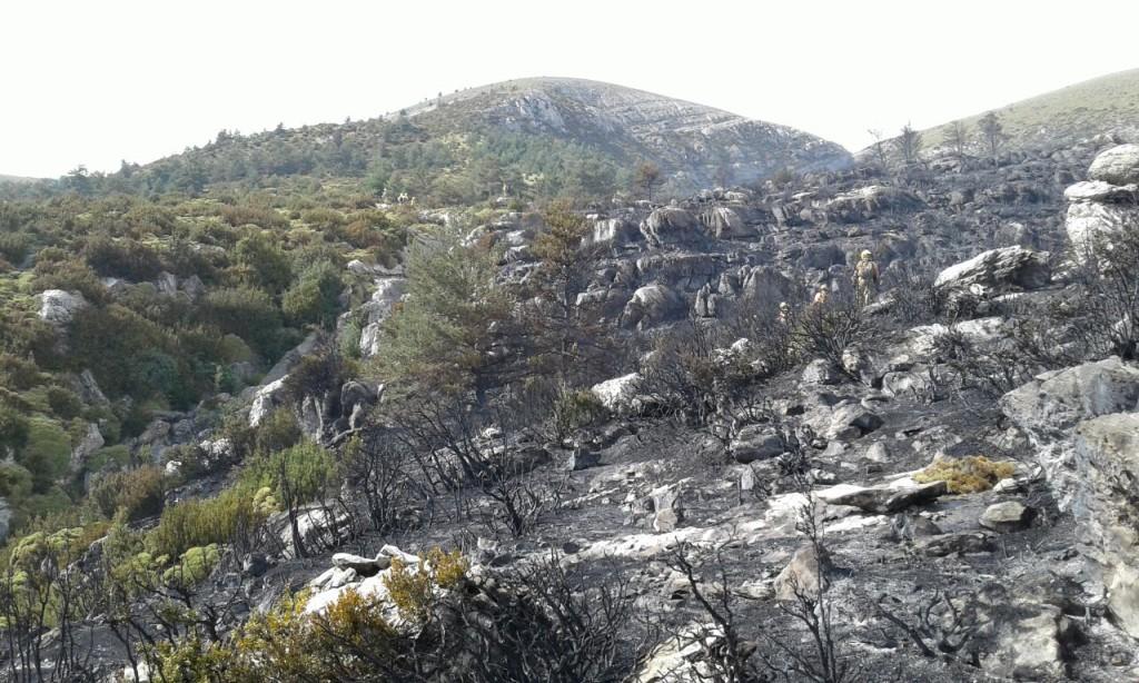 Controlado el incendio de Fanlo