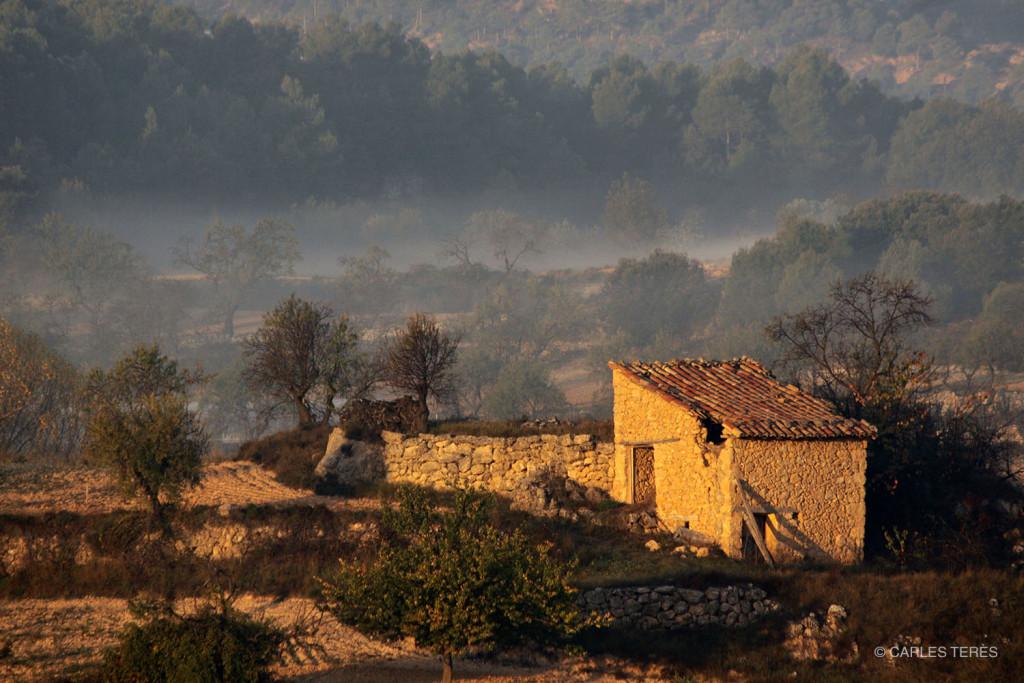 Foto: Carles Terès ©