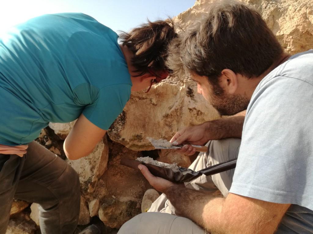 Finalizan las excavaciones arqueológicas en la Ciudad celtíbero-romana de Bursau