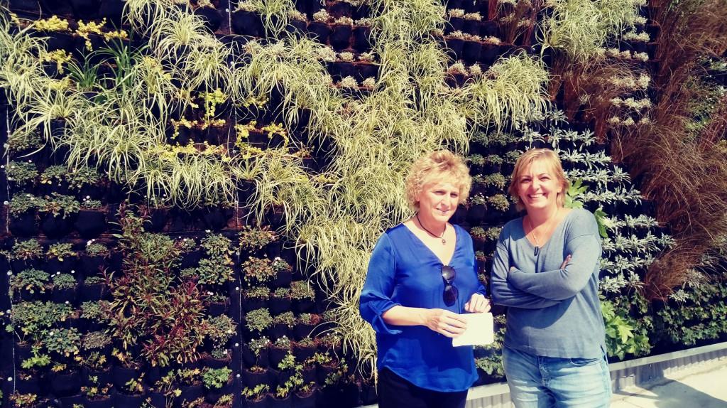Más de 900 plantas conforman el primer jardín vertical de la ciudad de Uesca