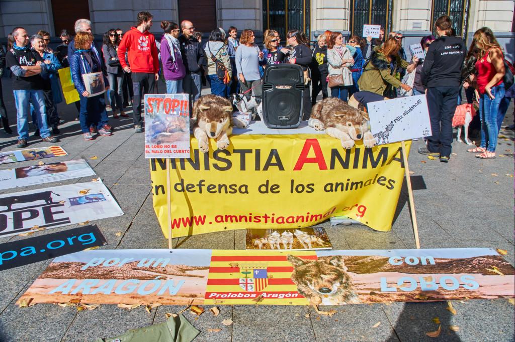 Amnistía Animal denuncia la ejecución de una perra por parte de la Guardia Urbana de Barcelona