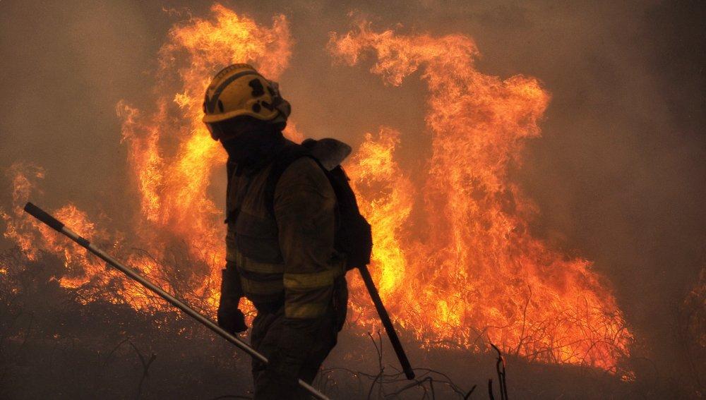 WWF alerta que los incendios fuera del verano serán la nueva norma con el cambio climático
