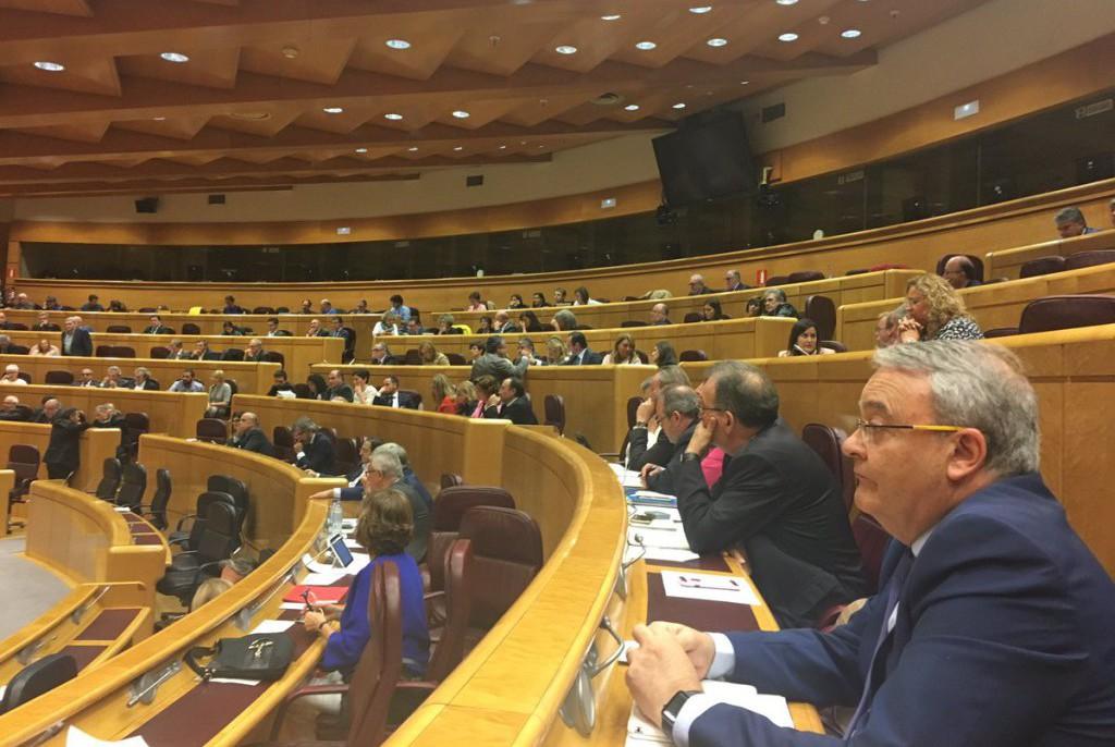 CHA responde al Gobierno español en el Senado sobre la variante Borja-Maleján