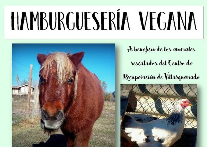 Un documental y una cena en CSA À Ixena de Teruel para concienciarse sobre el maltrato animal