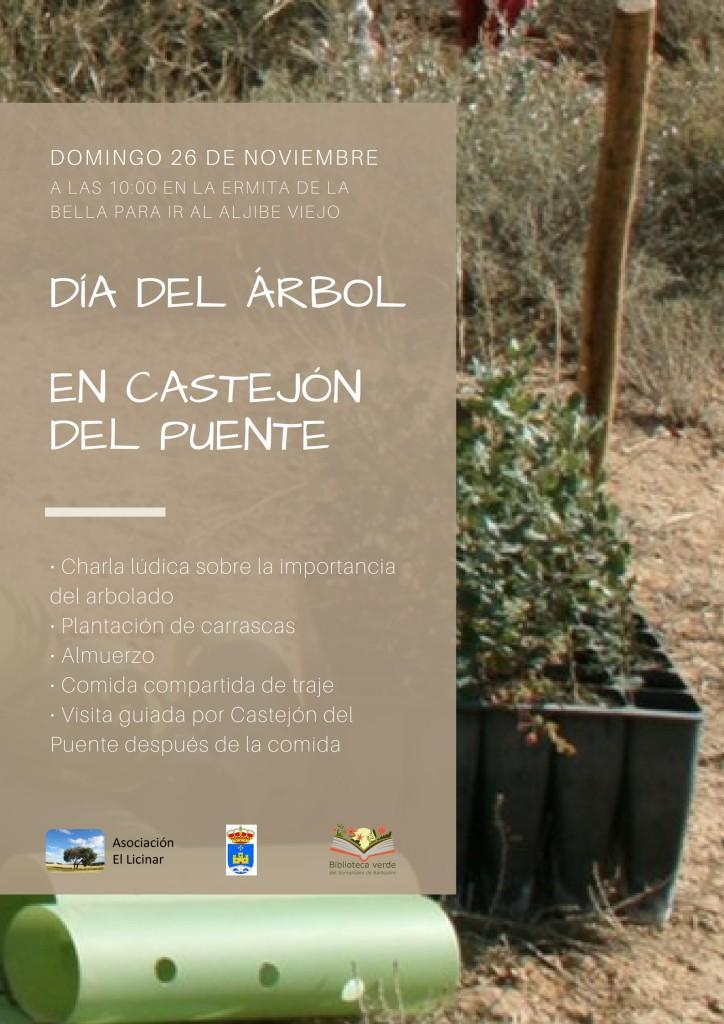 Día-del-Árbol-en-Castejón-del-Puente-724x1024