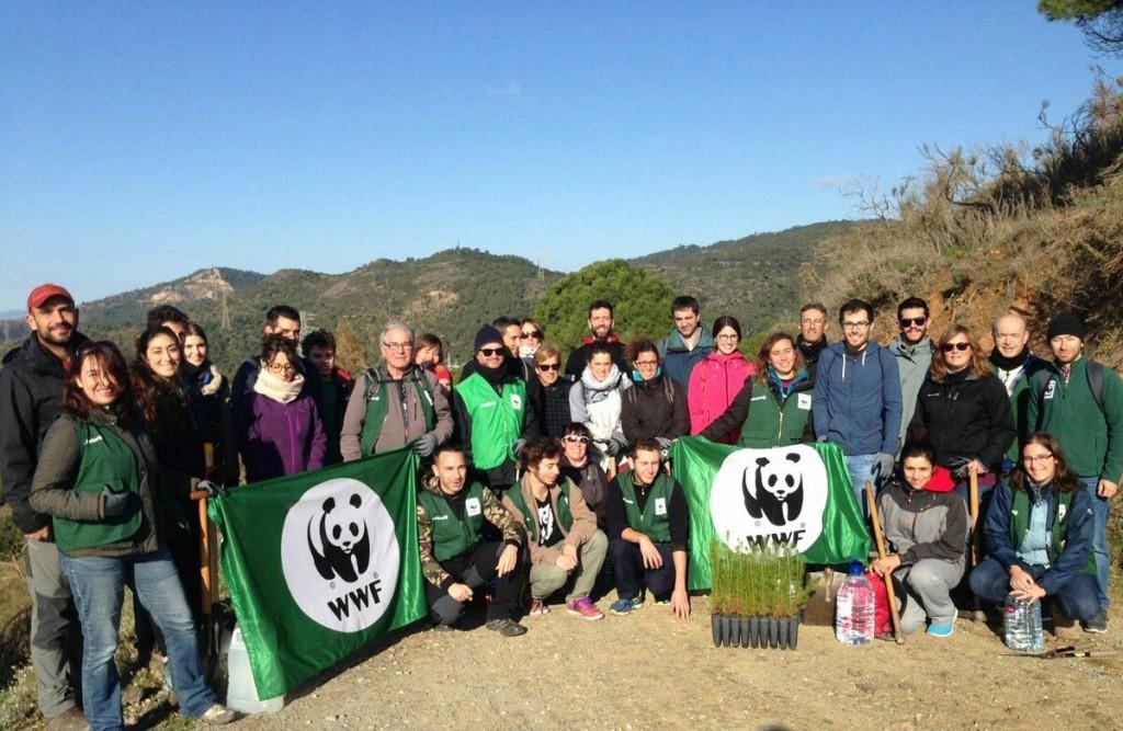 Cientos de personas voluntarias de WWF plantan árboles en defensa de los bosques