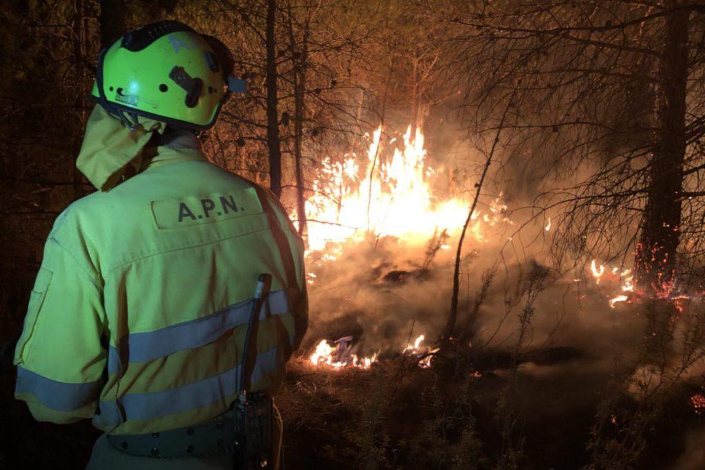 Alerta naranja de peligro de incendios forestales en Aragón