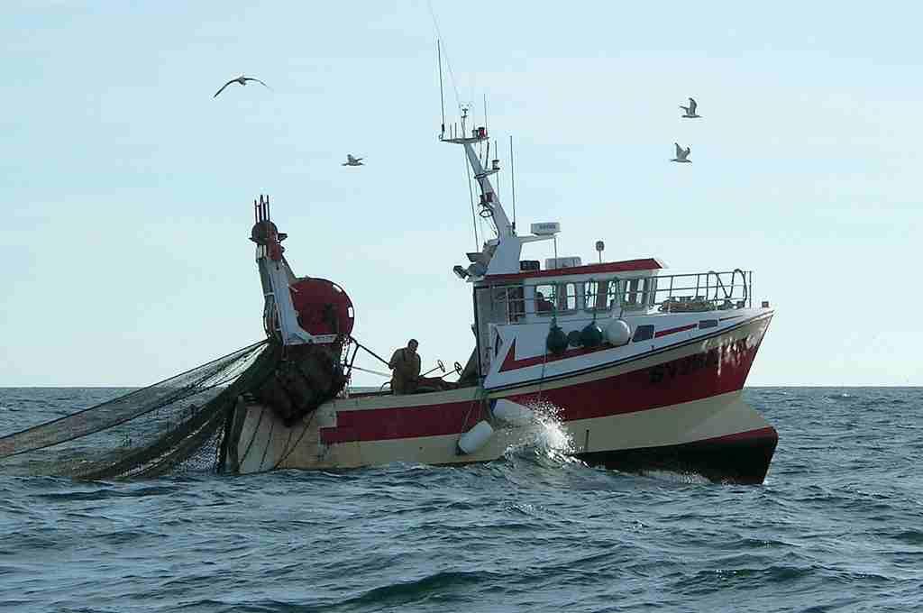 La UE podría aprobar este martes la pesca eléctrica de arrastre