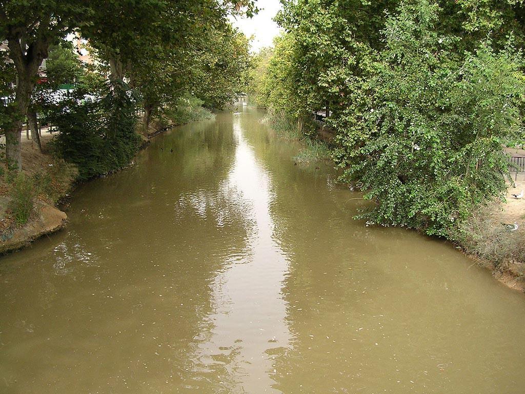 Reclaman en el Senado la mejora y acondicionamiento del Canal Imperial a su paso por Zaragoza