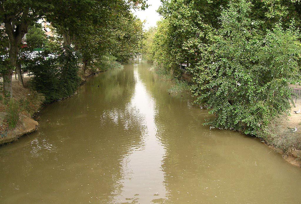 El Pleno de Zaragoza aprueba el impulso de un nuevo Plan Especial para mejorar y poner en valor del Canal