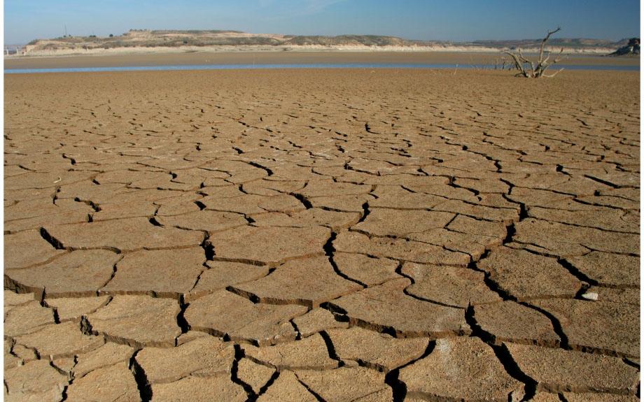 Aragón pedirá reducciones fiscales a las actividades agrarias afectadas por la sequía