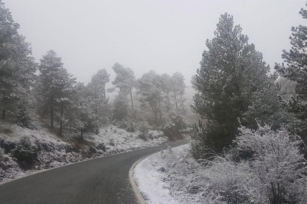 El temporal de nieve afecta a más de 2.300 alumnos y alumnas en Aragón y obliga a cerrar una treintena de centros educativos