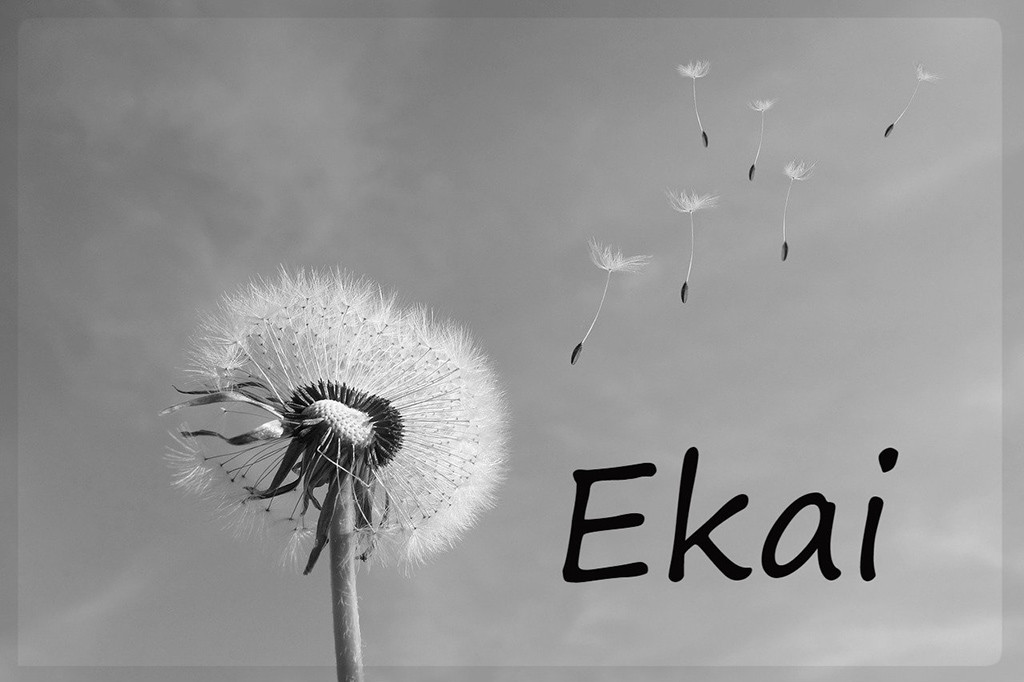 "En memoria de Ekai, ""para que no tengamos que reunirnos a llorar nunca más"""