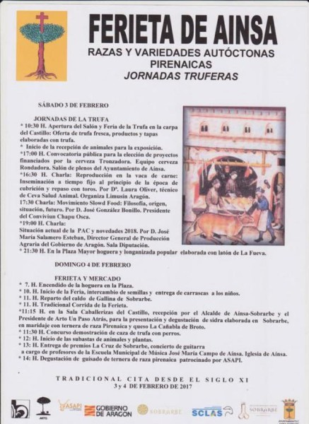 Ferieta de L'Ainsa 2