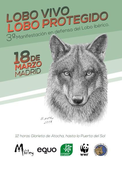 Lobo Mani 18M Madrid
