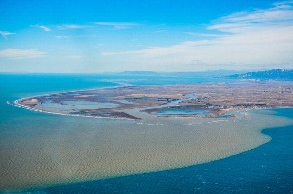 SEO/BirdLife defiende el papel de las zonas naturales de inundación para acabar con los daños de las avenidas de Ebro