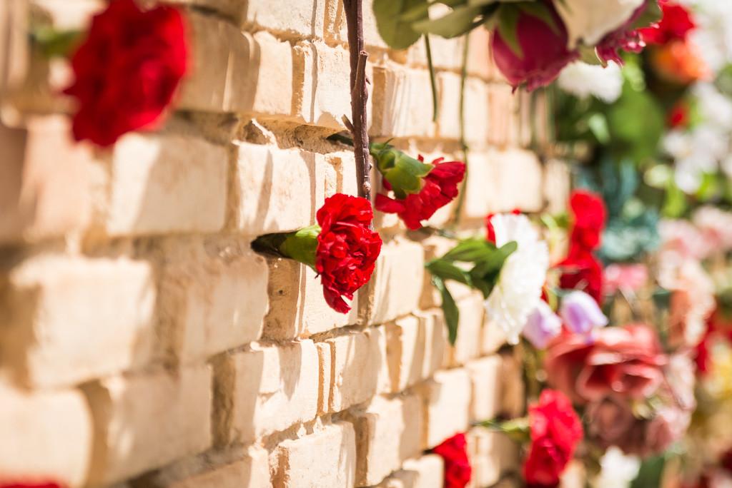 Música y flores en el cementerio de Torrero para recordar a las víctimas de la dictadura franquista