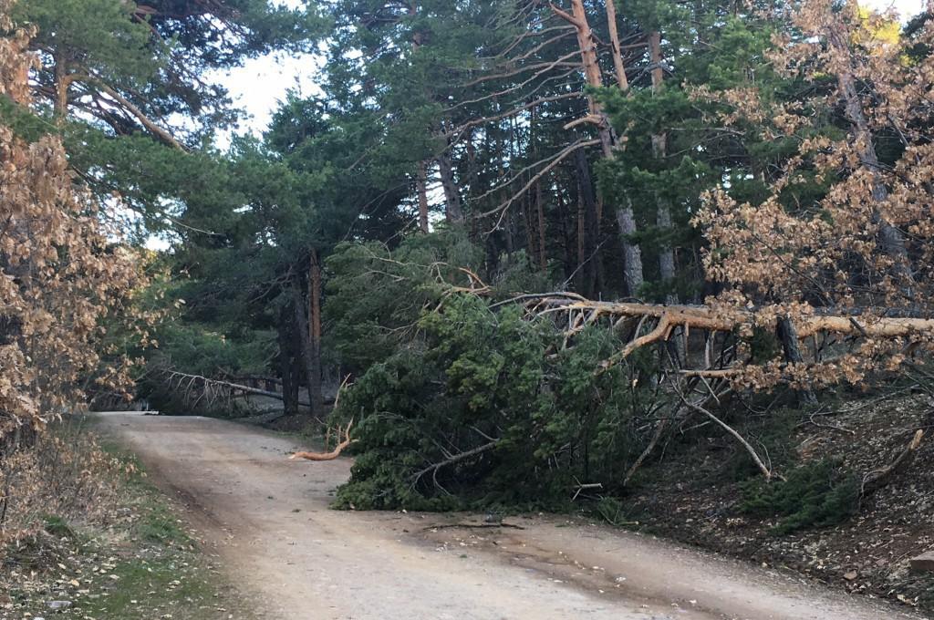 Oriuela reclama medidas para evitar los daños al medio natural que han originado las lluvias y las nevadas