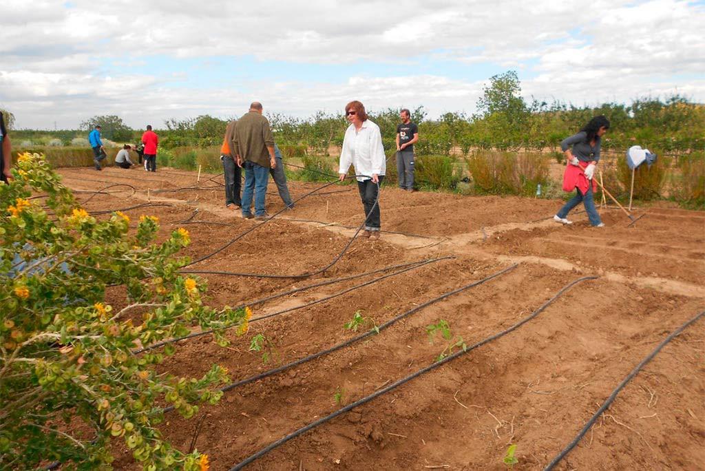 CERAI Aragón apoya y forma a agricultores y agricultoras sobre la huerta y la industria ecológicas