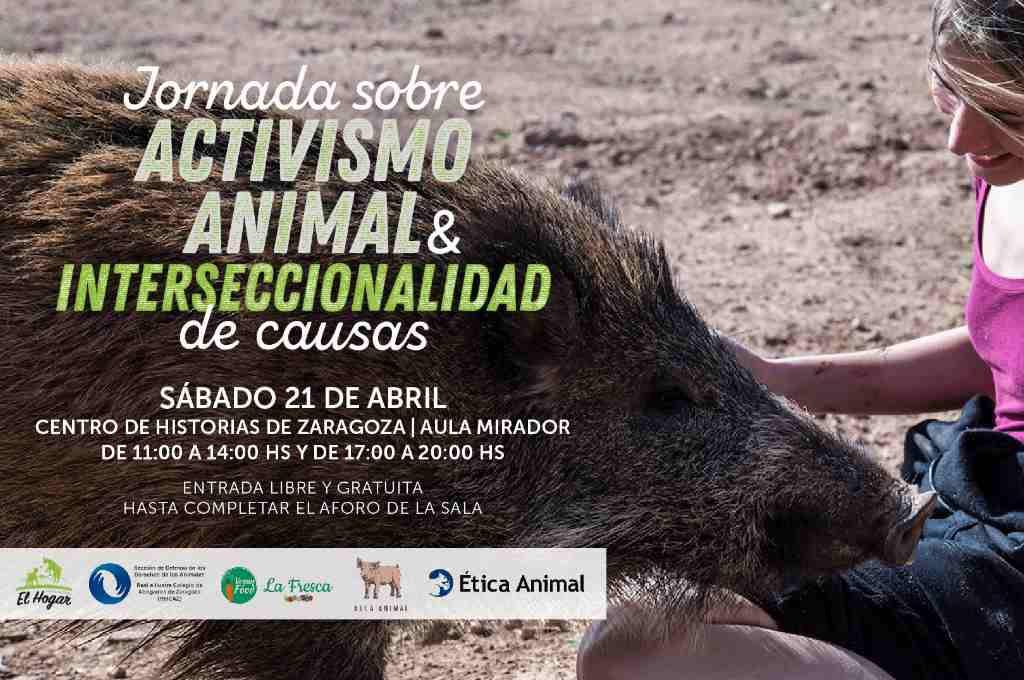 El Centro de Historias de Zaragoza acoge una jornada sobre activismo animalista e interseccionalidad de causas
