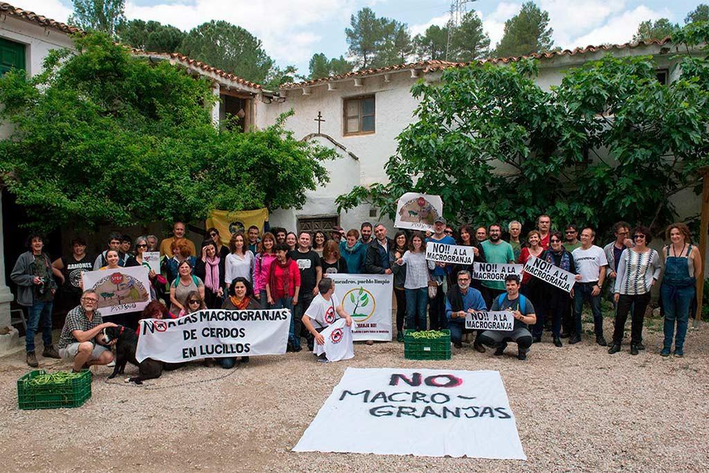 La Coordinadora Estatal Stop Ganadería Industrial reclama al Gobierno una moratoria a la ganadería industrial