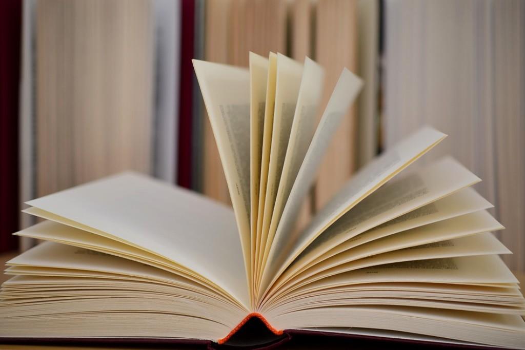 Los 16 libros de AraInfo para este verano