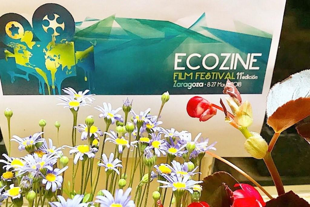 Ecozine: todo lo que podrás ver durante los seis días del cine y el medio ambiente en Zaragoza