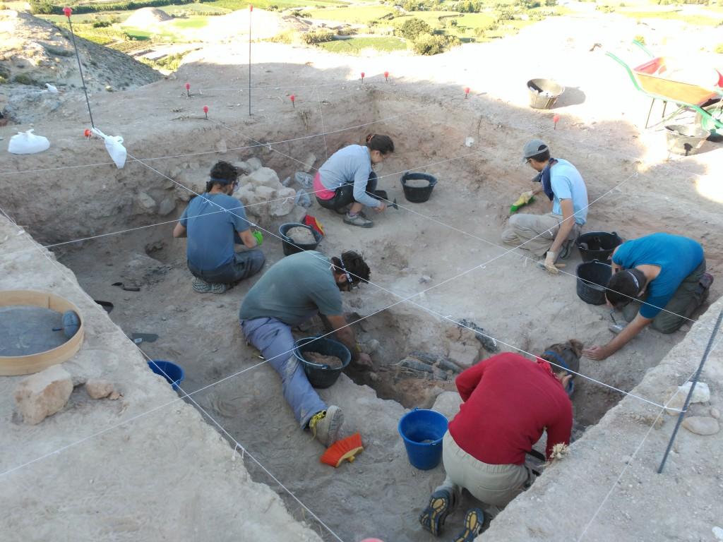 Comienzan las excavaciones arqueológicas en la ciudad celtíbero-romana de Bursau