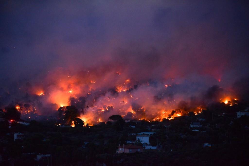 WWF lamenta la trágica oleada de incendios que devora Grecia