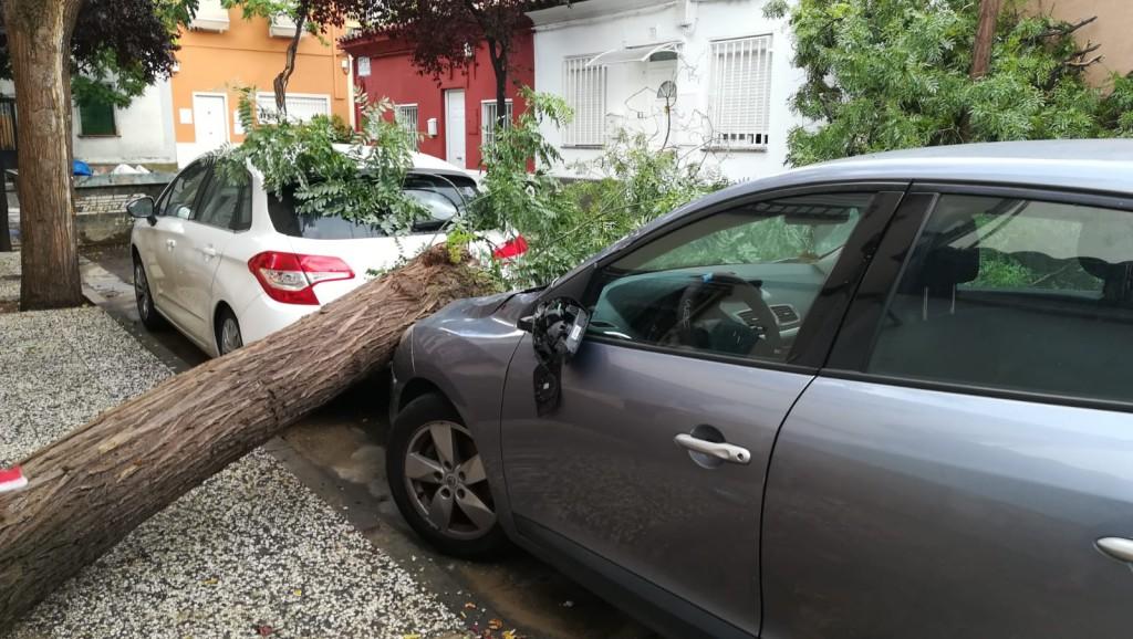 Los Bomberos de Zaragoza atienden más de 120 servicios por la tormenta