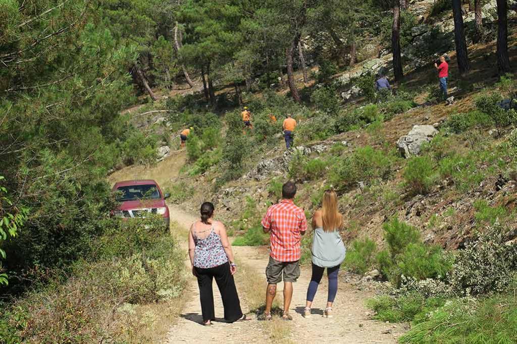 Aragón es de los pocos territorios que realiza trabajos de prevención de incendios en verano