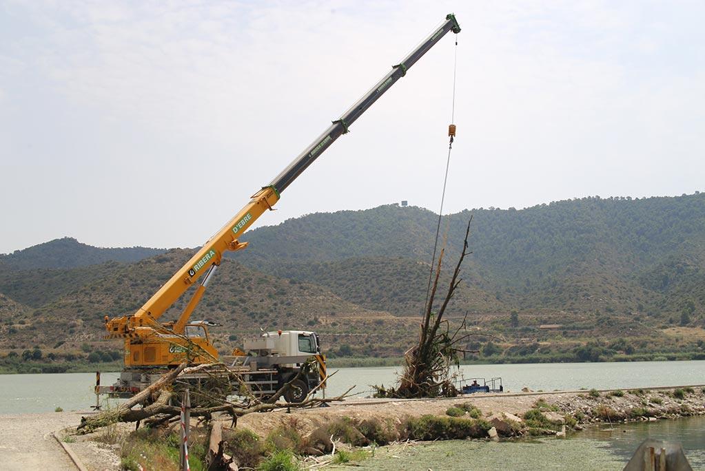 La CHE inicia los trabajos de retirada de troncos del cauce del Segre en Mequinensa