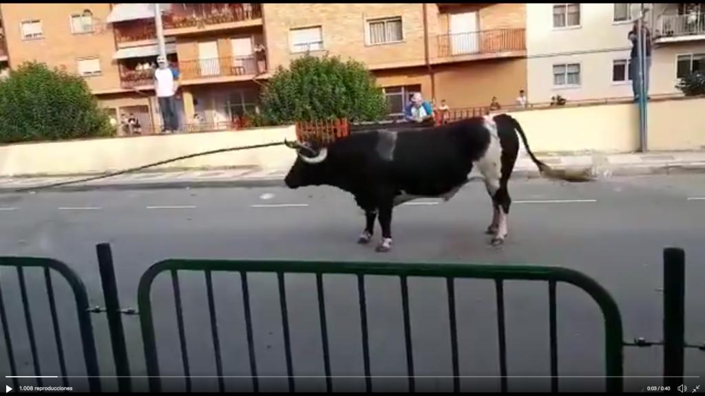 """Ganar Alcorisa condena """"la falta de condiciones mínimas de seguridad durante el toro ensogado"""""""