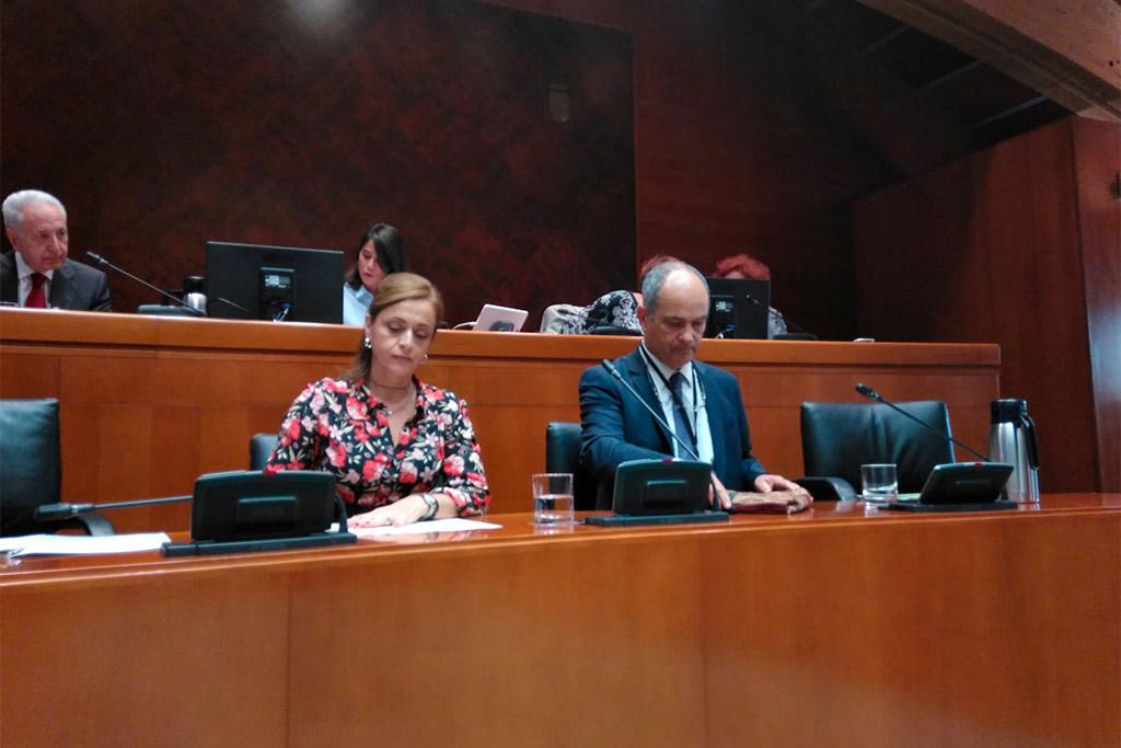 La Economía Social y Solidaria exige en las Cortes de Aragón que priorice el Plan de Impulso