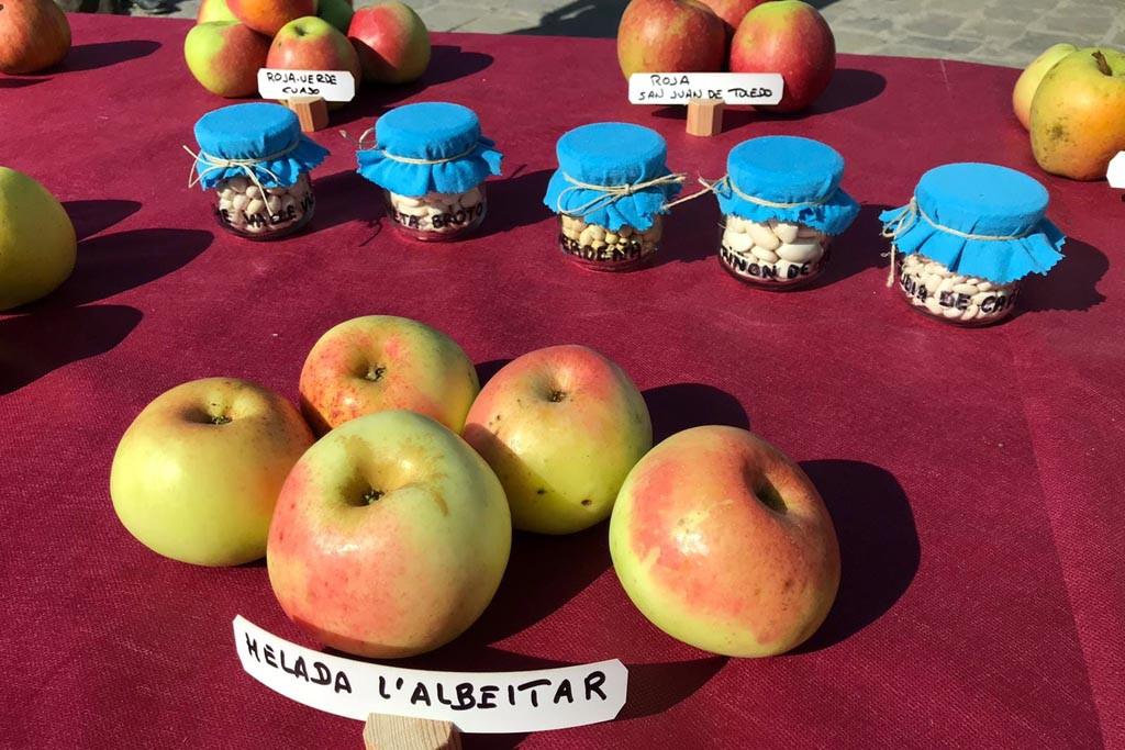 L'Aínsa ya tiene el primer zumo de manzana producida en la montaña